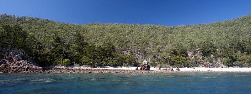 Beach at blue pearl bay