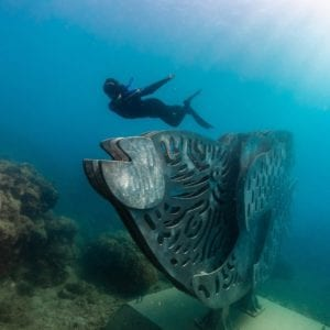 Whitsunday Islands Underwater Artwork Sculptures