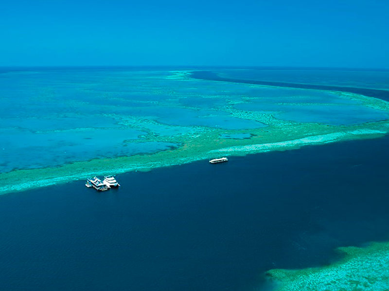 Cruise Whitsundays Reefworld pontoon at Hardy Reef, Great Barrier Reef marine park